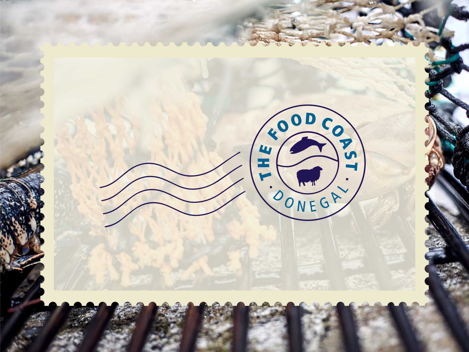 Food Coast Donegal e-Newsletter